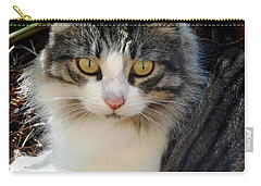 Fluffy Cat Carry-all Pouch by Pamela Walton