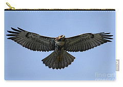 Flying Free - Red-tailed Hawk Carry-all Pouch by Meg Rousher