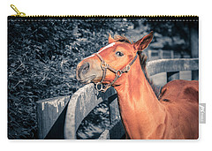 Foal By The Fence Carry-all Pouch