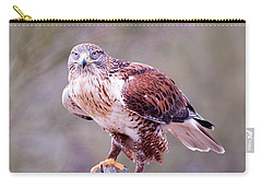 Carry-all Pouch featuring the photograph Focus by Dan McManus