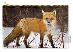 Fox In Winter Carry-all Pouch