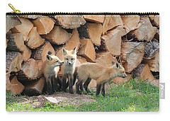 Fox Kits Carry-all Pouch