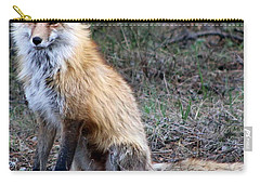 Foxy Lady  Carry-all Pouch by Fiona Kennard