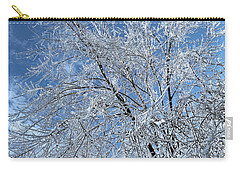Carry-all Pouch featuring the photograph Freezing Rain ... by Juergen Weiss