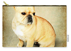 Carry-all Pouch featuring the photograph French Bulldog Antique by Barbara Chichester