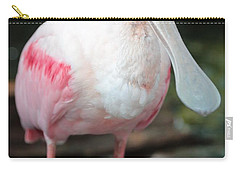 Friendly Spoonbill Carry-all Pouch by Carol Groenen