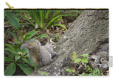 Carry-all Pouch featuring the photograph Friendly Squirrel by Marilyn Wilson