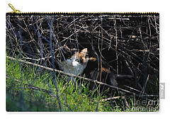Frightened Feral Calico  Carry-all Pouch by Susan Wiedmann