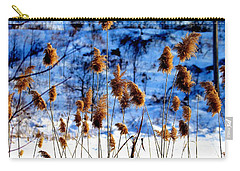 Carry-all Pouch featuring the photograph Fronds In Winter by Eleanor Abramson