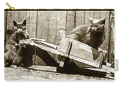 Carry-all Pouch featuring the photograph Fun With Cats Henry King Nourse Photographer Circa 1900 by California Views Mr Pat Hathaway Archives