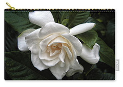Gardenia Carry-all Pouch by Jessica Jenney