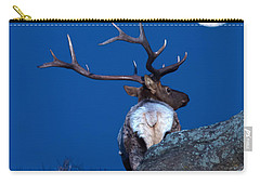 Gazing At The Moon Carry-all Pouch