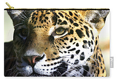 Gazing Jaguar Carry-all Pouch
