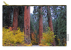 Carry-all Pouch featuring the photograph General's Highway by Lynn Bauer