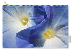 Gently Unfolding Carry-all Pouch