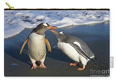 Gentoo Penguin Chick Begging For Food Carry-all Pouch