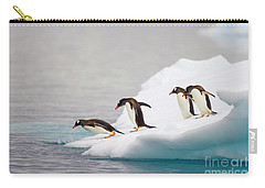 Gentoo Penguin Diving From Iceberg Carry-all Pouch by Yva Momatiuk and John Eastcott