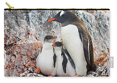 Gentoo Penguin Family Booth Isl Carry-all Pouch by Yva Momatiuk and John Eastcott