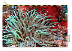 Carry-all Pouch featuring the photograph Giant Green Sea Anemone Against Red Coral by Amy McDaniel