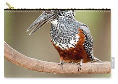 Giant Kingfisher Megaceryle Maxima Carry-all Pouch by Panoramic Images