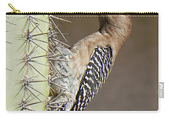 Carry-all Pouch featuring the photograph Gila Woodpecker by Deb Halloran