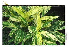 Ginger Lily. Alpinia Zerumbet Carry-all Pouch by Connie Fox