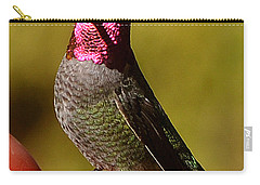 Carry-all Pouch featuring the photograph Glimmering Red Headed Mail Anna by Jay Milo