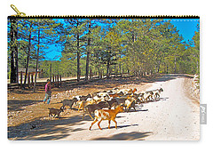 Goats Cross The Road With Tarahumara Boy As Goatherd-chihuahua Carry-all Pouch