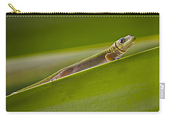 Gold Dust Day Gecko Carry-all Pouch by Venetia Featherstone-Witty
