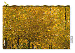 Carry-all Pouch featuring the photograph Golden Aspens by Don Schwartz
