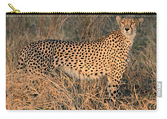 Golden Cheetah At Sunset Carry-all Pouch
