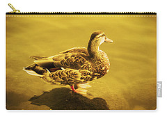 Carry-all Pouch featuring the photograph Golden Duck by Nicola Nobile