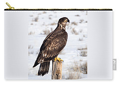 Golden Eagle On Fencepost Carry-all Pouch by Nadja Rider