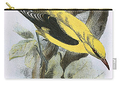 Golden Oriole Carry-all Pouch by English School