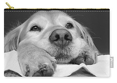 Golden Retriever Dog I See You Carry-all Pouch