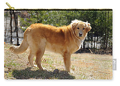 Golden Retriever Carry-all Pouch by Kenny Francis