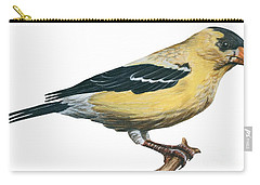 Goldfinch  Carry-all Pouch by Anonymous