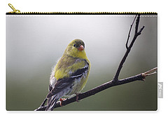 Carry-all Pouch featuring the photograph Goldfinch Molting To Breeding Colors by Susan Capuano
