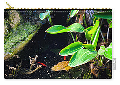 Carry-all Pouch featuring the photograph Goldfish In Pond by Silvia Ganora