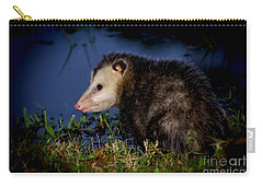 Carry-all Pouch featuring the photograph Good Night Possum by Olga Hamilton