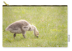 Carry-all Pouch featuring the photograph Gosling by Jeannette Hunt