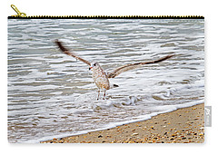 Graceful Landing Carry-all Pouch by Betsy Knapp
