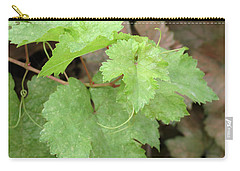 Grapevine Carry-all Pouch by Laurel Powell