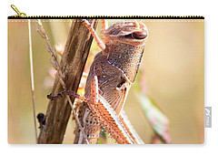 Grasshopper In The Marsh Carry-all Pouch by Carol Groenen