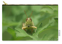Carry-all Pouch featuring the photograph Grasshopper Portrait by Olga Hamilton