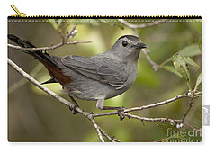 Carry-all Pouch featuring the photograph Gray Catbird by Meg Rousher