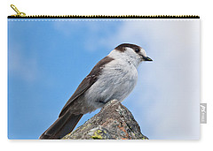 Gray Jay With Blue Sky Background Carry-all Pouch