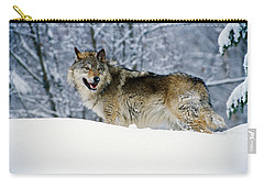 Gray Wolf In Snow, Montana, Usa Carry-all Pouch