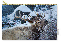 Carry-all Pouch featuring the photograph Grazing Elk by Michael Chatt