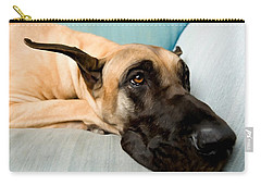 Great Dane Dog On Sofa Carry-all Pouch